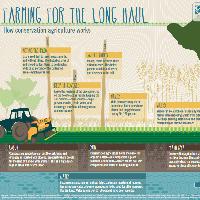 infographics on soil